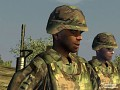 Armed Assault (PC)