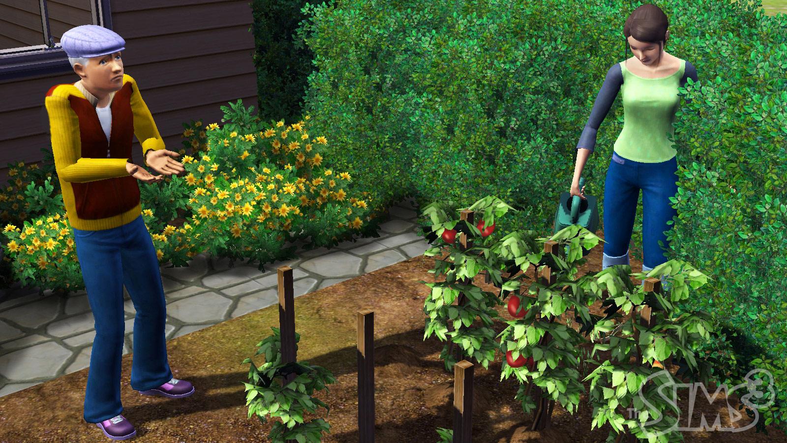 Electronic Arts enthüllt Die Sims 3 - Die Sims 3