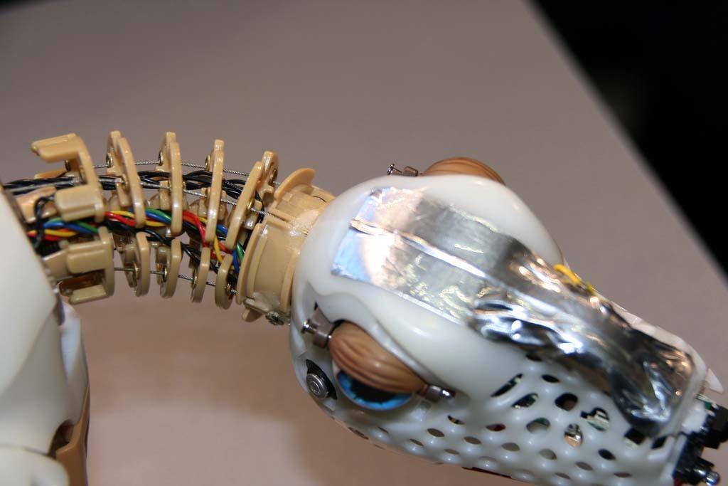 Interview: Roboter-Dino Pleo kommt nach Deutschland -