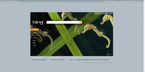 Microsofts Bing