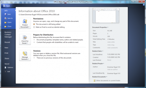 Office 2010 Technical Preview: Dokumenteninformationen