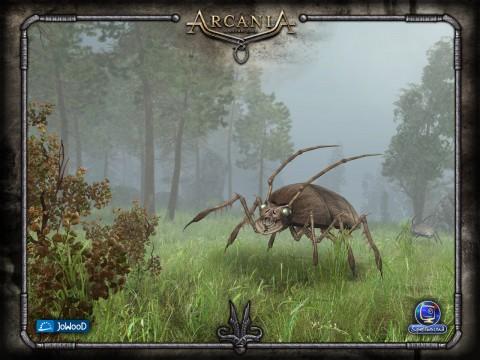 Arcania - Bilder von der Webseite
