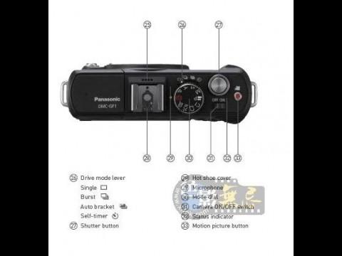 Panasonic GF1 (Bild aus xitek-Forum)
