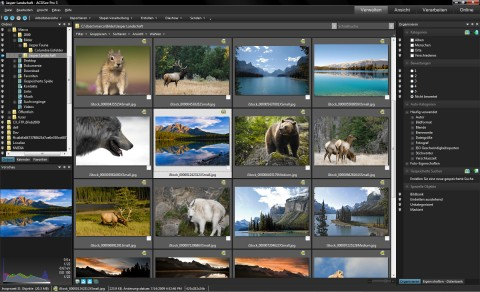 ACDSee ProFoto Manager 3