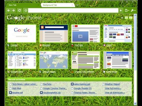 Chrome mit Themes