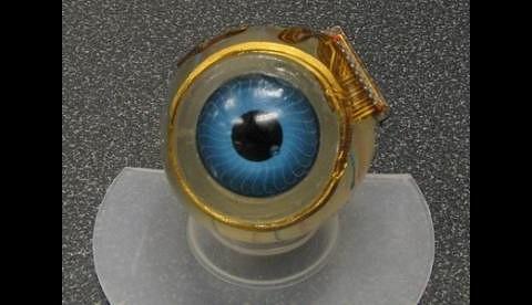 Chip fürs Auge. Die Spule um die Iris ist der Empfänger für die Daten von der Kamera. (Foto: Shawn Kelly)
