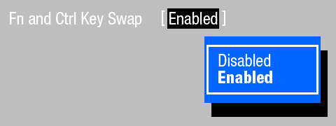 Künftige BIOS-Funktion für Lenovo-Notebooks: 'Fn and Ctrl Key Swapped'