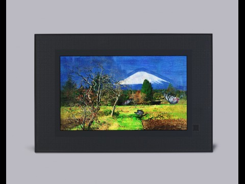 Casio Digital Art Frame