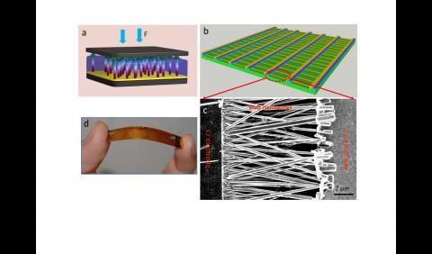 Sensor mit senkrechten (oben links) und waagerechten Drähten (rechts) (Bilder: Zhonglin Wang)