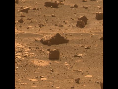 Der erste von Opportunity ausgewählte Stein... (Foto: Nasa)
