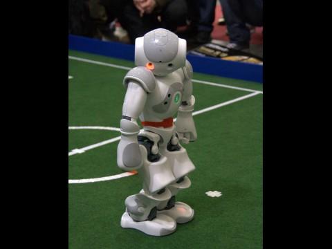 Das Fußballteam B-Human besteht aus drei Robotern des französischen Herstellers Aldebaran. (Foto: wp)