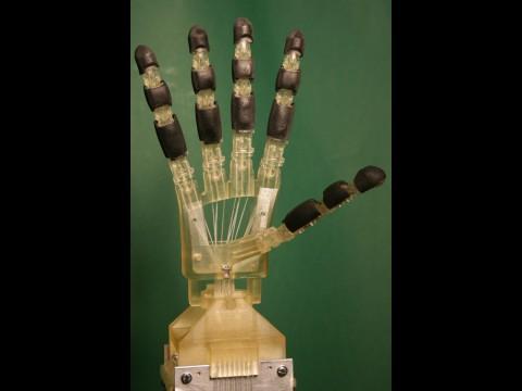 Roboterhand mit Schnurantrieb (Foto: Universität des Saarlandes)
