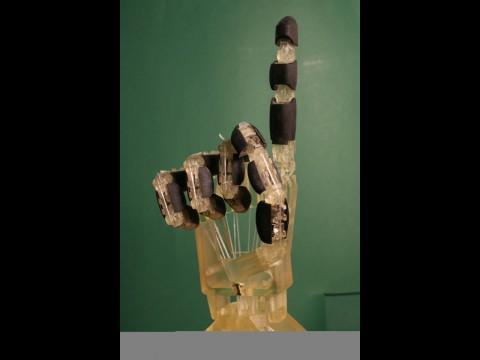 Mit dem Antrieb kann die Hand kraftvoll und behutsam greifen. (Foto: Universität des Saarlandes)