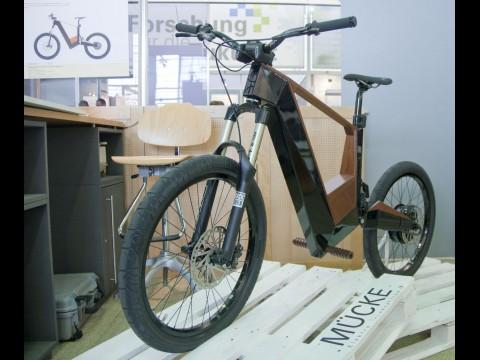 E-Bike Mücke (Foto: wp)