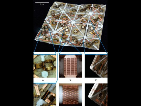 Details des selbstfaltenden Materials (Foto: Robert Wood, Daniela Rus)