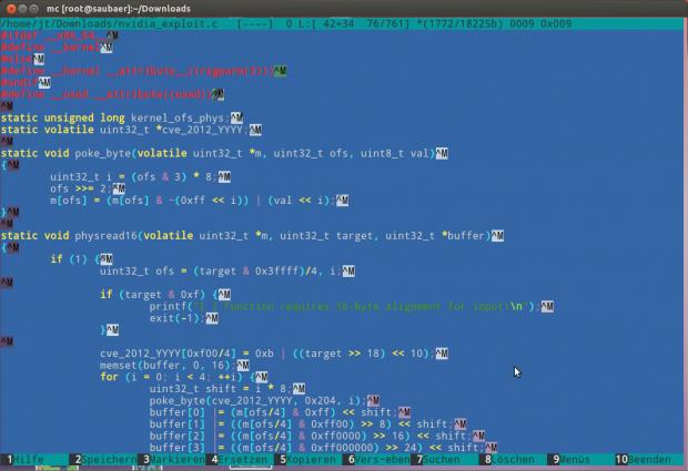 Ein Auszug des Codes, der eine Schwachstelle im Nvidia-Treiber ausnutzen kann.