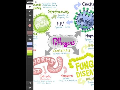 Adobe Ideas (iPad-Version)