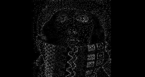 Bei diesem Ausgangsbild, das Professor Joachim Weickert erstellt hat, sind lediglich zehn Prozent aller Pixel bekannt.