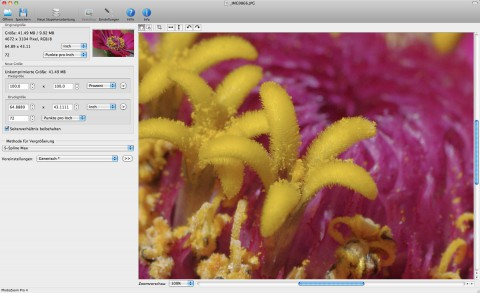 Photozoom Pro 4 - Bild in Originalgröße (Foto: Andreas Donath)