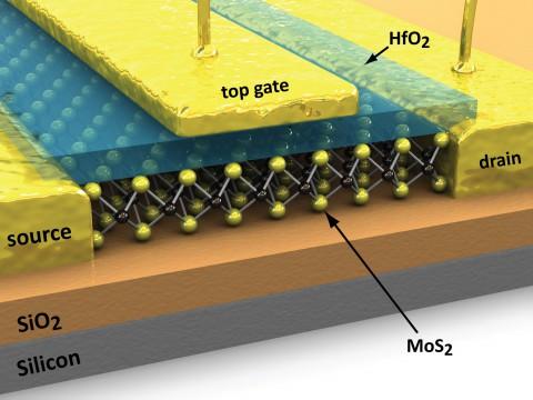 Der gesamte MOS2-Transistor (Bild: ETH Lausanne)