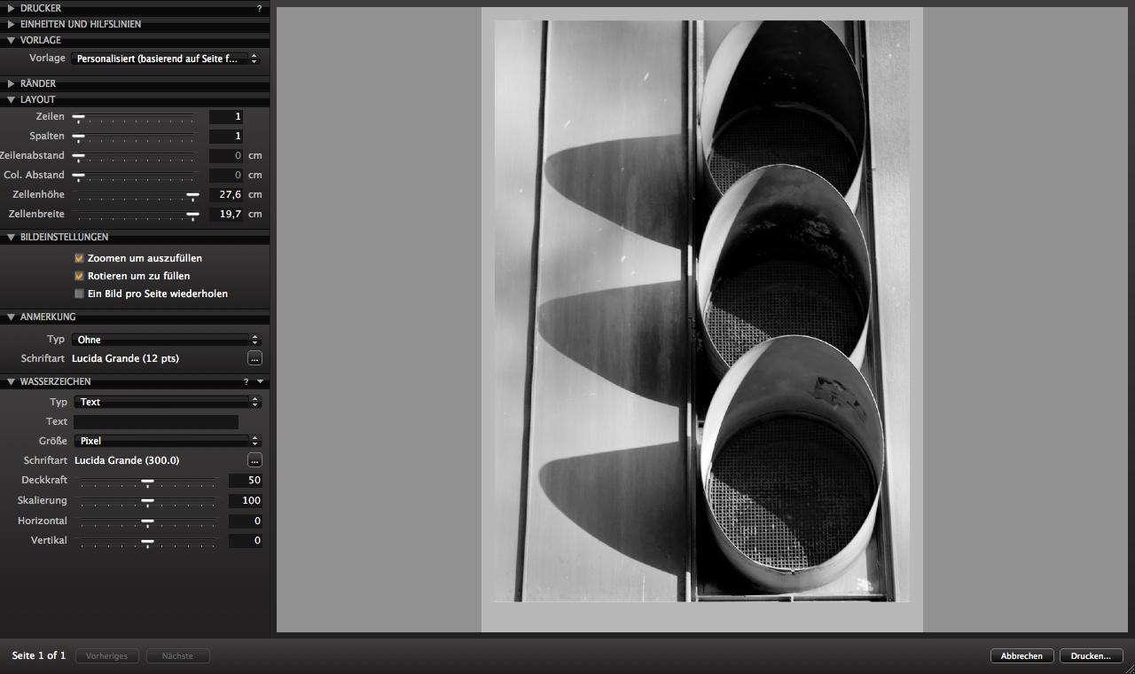 Capture One: Rohdatenentwickler mit Perspektivkorrektur - Phase One Capture One - Druckdialog