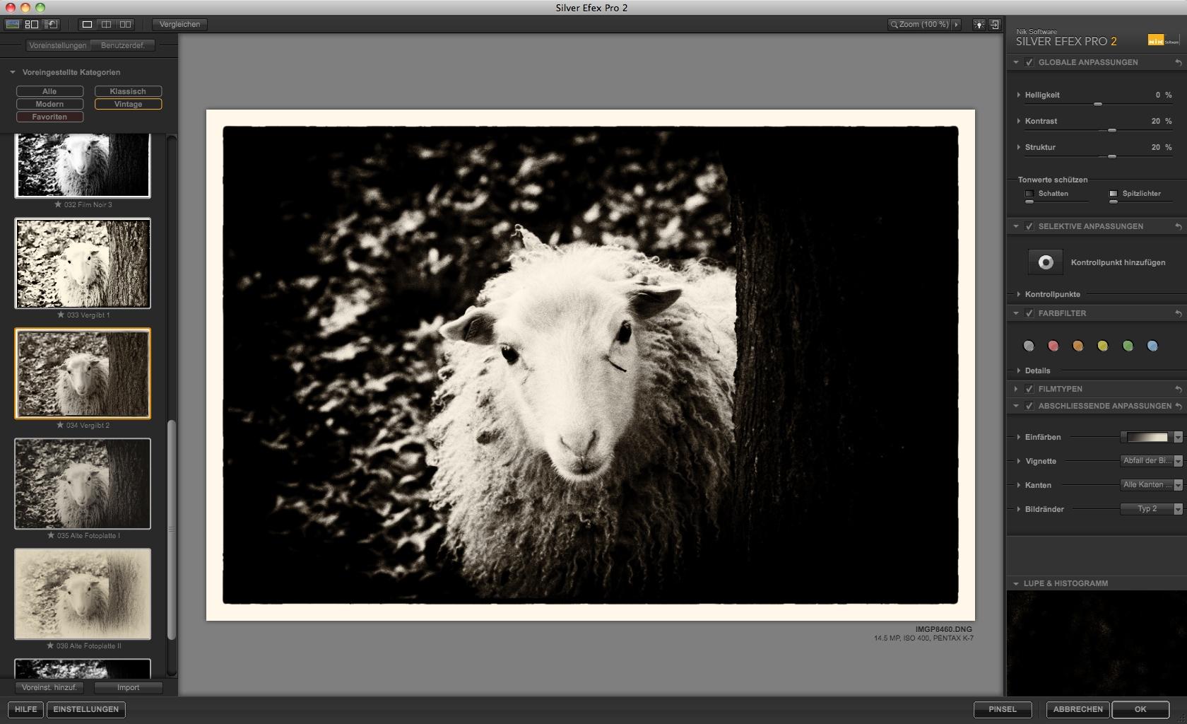 Nik Software: Bildbearbeitung für Schwarz-Weiß-Fotos - Silver Efex Pro 2 - vergilbt (Foto: Andreas Donath)