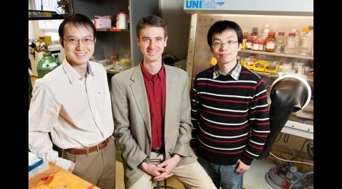 Xindi Yu (links), Paul Braun und Huigang Zhang (rechts)