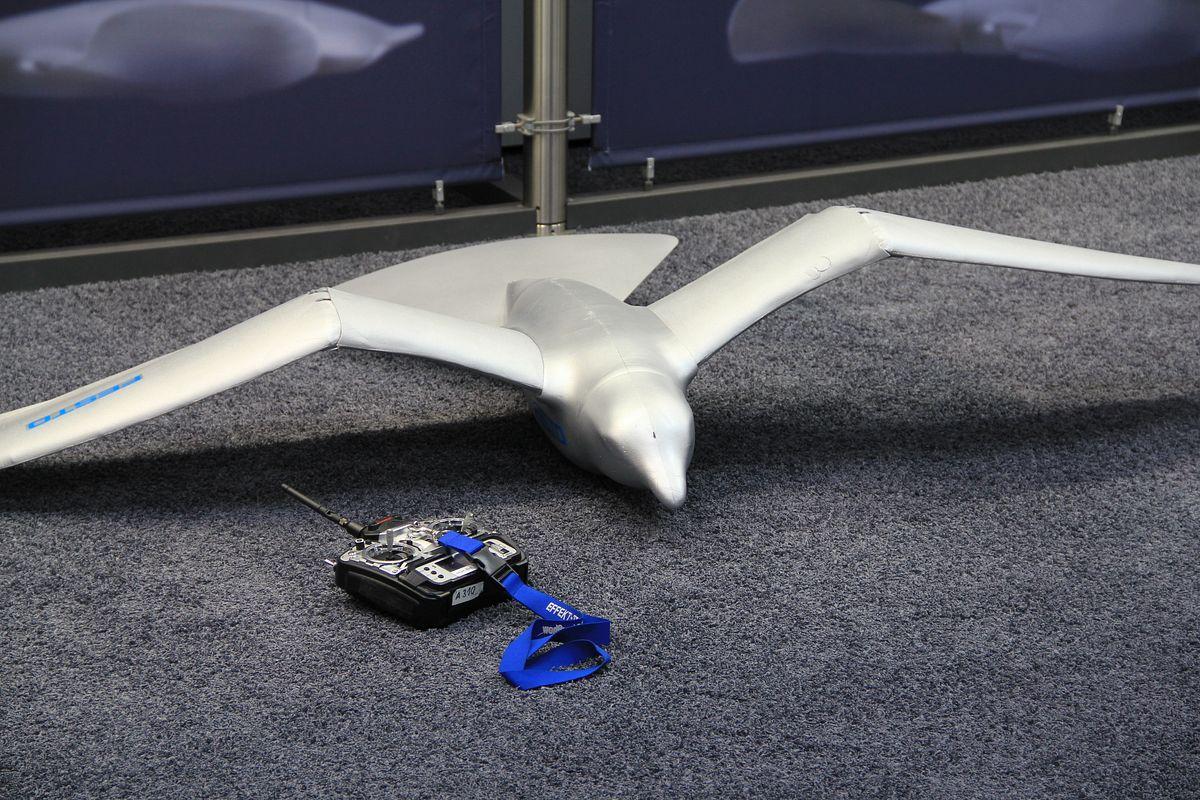 Smart Bird: Bionik erzeugt Aufmerksamkeit - Noch liegt der am Boden, ... (Foto: wp)