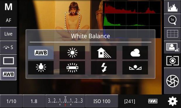 DSLR Controller - Einstellung des Weißabgleichs (Bild: Chainfire)