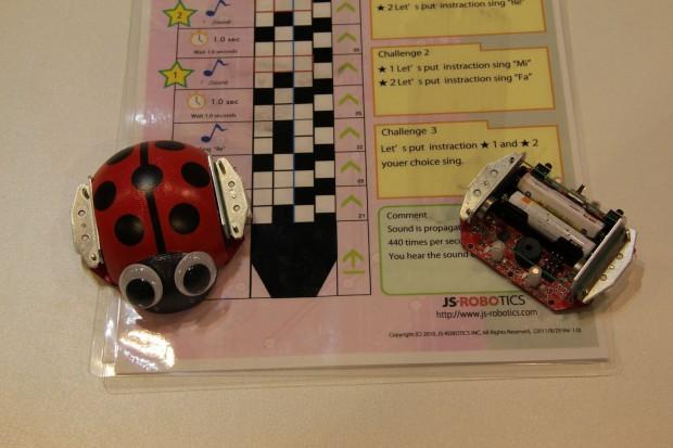 Der Ladybug Robot mit Programmkarte (Foto: Werner Pluta)