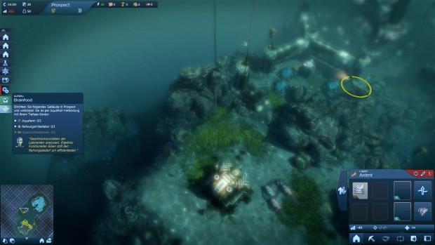 Am Meeresboden entsteht eine Siedlung.