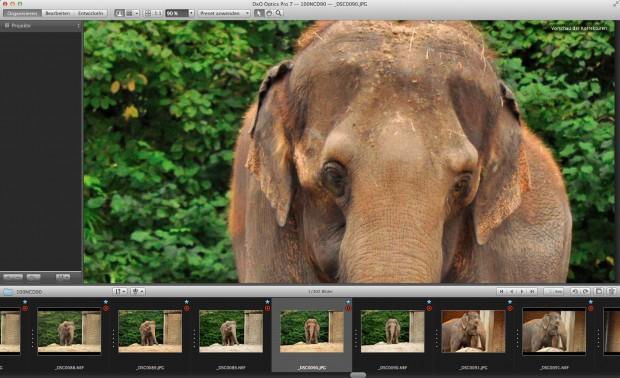Dateiverwaltung von Dxo Optics Pro 7 (Bild: Tim Kaufmann)