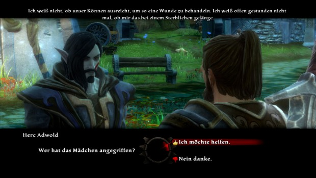 Kingdoms of Amalur: Reckoning (Screenshot: Golem.de)