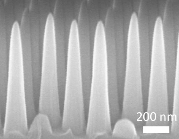 Nanozapfen sind für die besonderen Eigenschaften verantwortlich. (Bild: Kyoo-Chul Park, Hyungryul Choi/MIT)