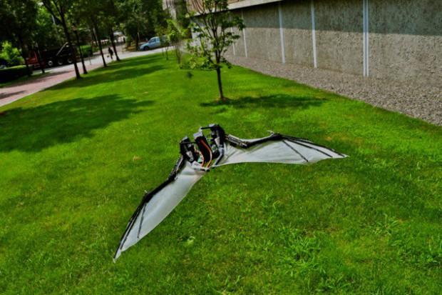 Batbot (Bild: Polytechnische Universität Madrid)