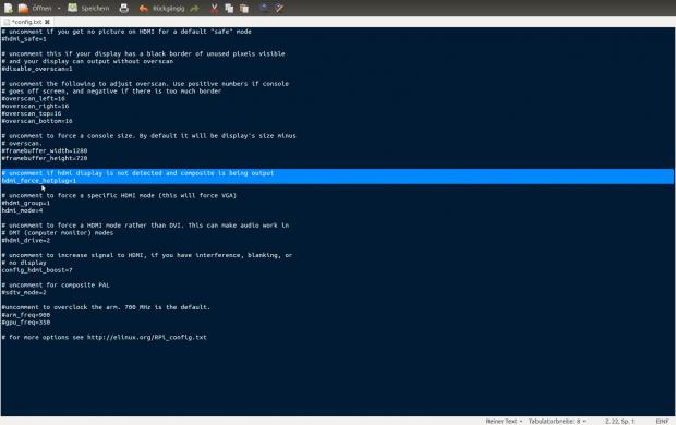 Mit dieser Option startet das Raspberry Pi auch ohne angeschlossenen Monitor.