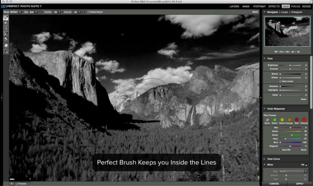 Onone Perfect B&W (Bild: Onone/Screenshot: Golem.de)