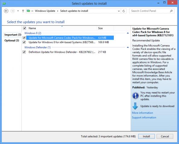 Das Windows Update zeigt das Camera Codec Update an.