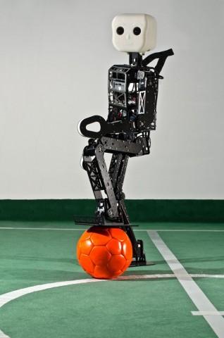 Ballsicher: Der Roboter Nimbro-OP, der an der Universität in Bonn entwickelt wurde (Foto: Felix Oprean/Uni Bonn)