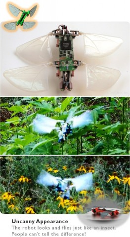 Die Drohne Robot Dragonfly... (Bild: Techject)