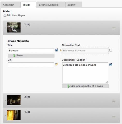 In Webseiten verwendete Dateien können mit Metadaten versehen werden und dank File Abtraction Layer an beliebigen Orten abgespeichert werden, etwa auf WebDAV-Servern. (Bild: Typo3)