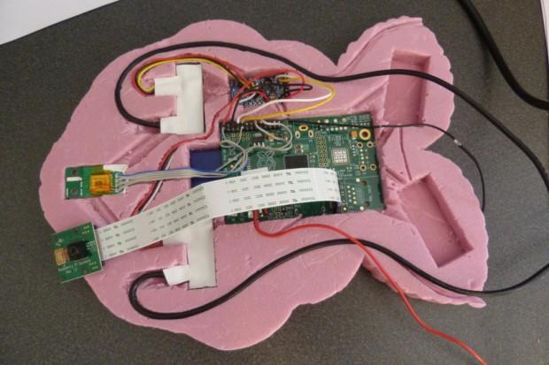 Raspberry Pi im Gehäuse (Bild: Dave Akerman)