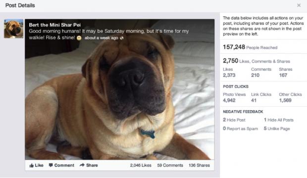 Jeder Beitrag soll eine eigene Statistikseite erhalten, auf der die Interaktionswerte angezeigt werden. (Bilder: Facebook)