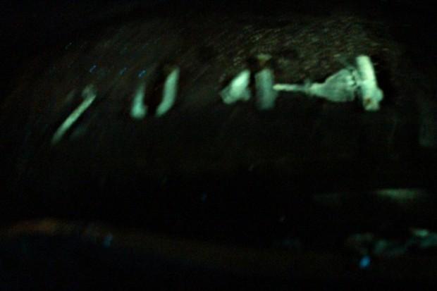 Die Seriennummer an der Brennkammer unter Schwarzlicht (Bild: bezosexpeditions.com)