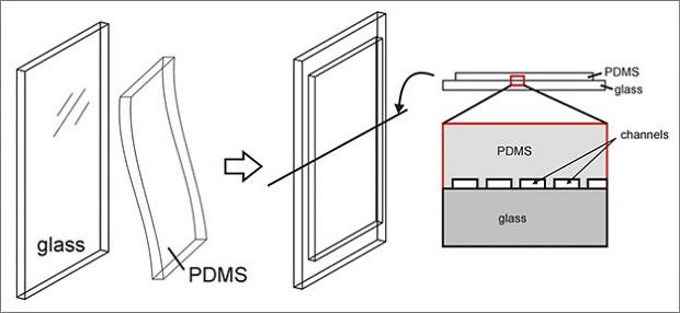 Schematischer Aufbau des Fensters mit Mikrokanälen aus Silikon (Bild: Wyss Institut Universität Harvard)