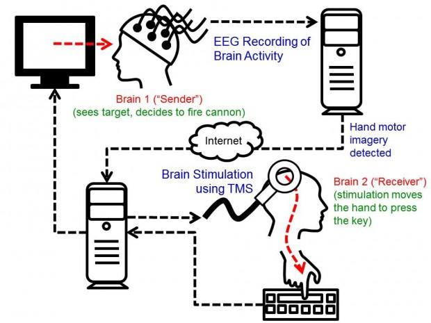 Funktionsweise der Gehirn-zu-Gehirn-Kommunikation (Bild: University of Washington)