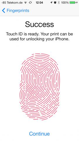 Die Grafik entspricht nicht dem tatsächlichen Fingerabdruck. (Screenshot: Golem.de)