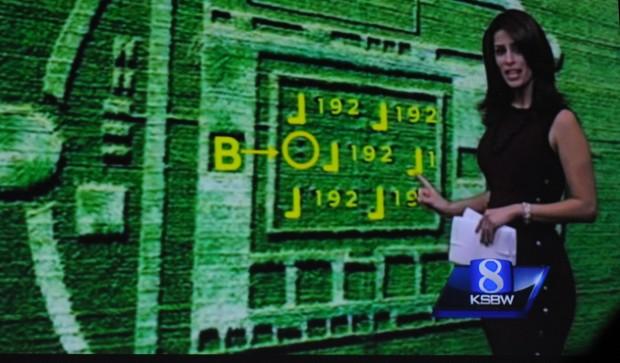 Die Zahl 192 steckt als Braille im Kornkreis, ... (Folien: Nvidia, Fotos: Nico Ernst/Golem.de)