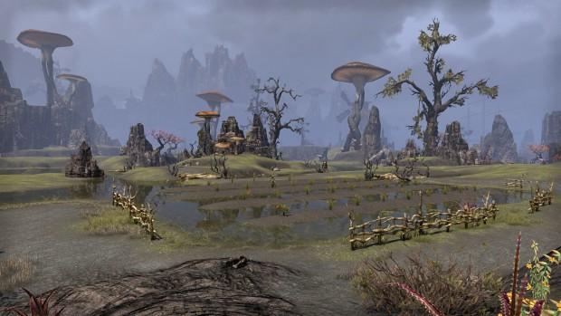 Die Landschaften von Morrowind hat Zenimax Online nahe am Original programmiert. (Screenshot: Marc Sauter/Golem.de)