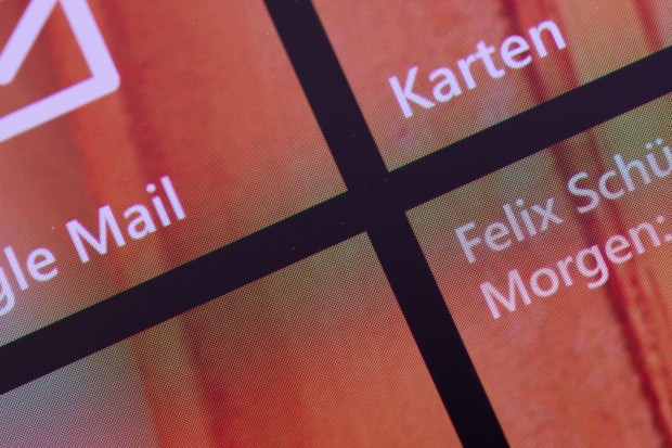 Die Pentile-Matrix des OLED-Panels (Bild: Fabian Hamacher/Golem.de)